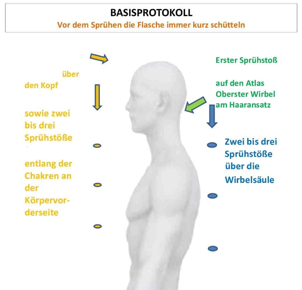 Zellerneuerung - healthgroup24.eu